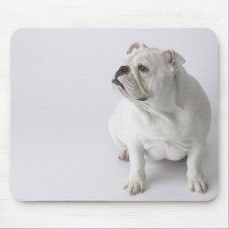 White English Bulldog Mouse Pad