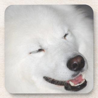 White Eskimo Dog Cork Coasters