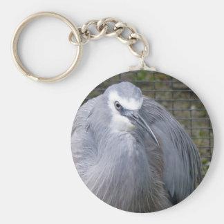 White-faced Heron Key Chains