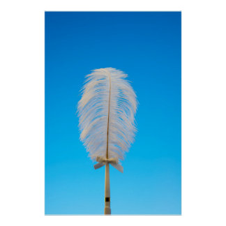 white feather on blue poster