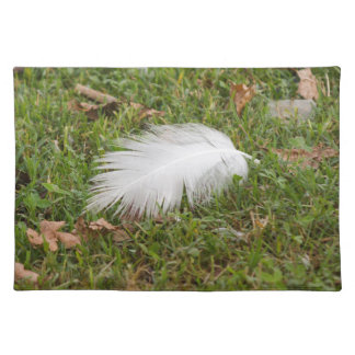 white feather on meadow placemat