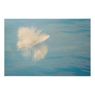White Feather Reflects on Water | Seabeck, WA Wood Print