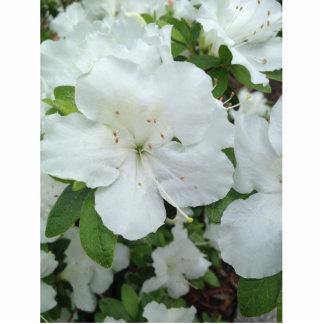 "White Flower 2""x3"" Pin Photo Sculpture Button"