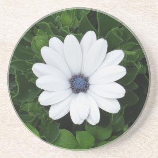White Flower coaster