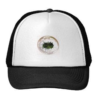 White flower in the globe cap