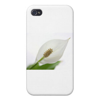 white flower iPhone 4 cases