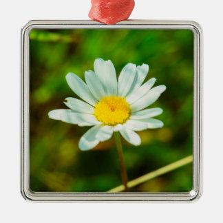 White flower macro christmas ornament