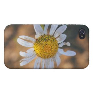 White flower macro iPhone 4 case
