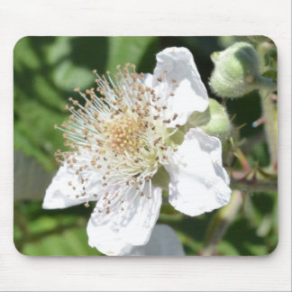 White Flower Macro Mouse Pad