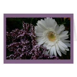 White Flower purple background Card