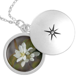 White Flower with Ant Round Locket Necklace