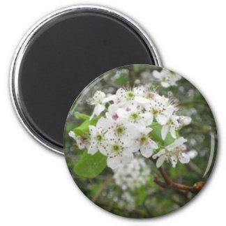 White Flowers 6 Cm Round Magnet