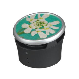 White Flowers III Speaker