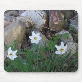 White FLowers in a Rock Garden Mouse Mat