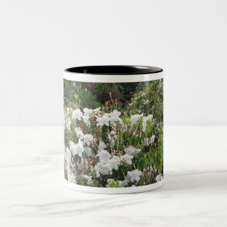 White Flowers in Eureka, CA Two-Tone Mug