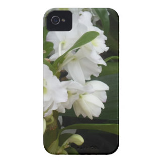 white flowers iPhone 4 Case-Mate cases