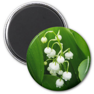 White Flowers Lily-of-the-Valley Magnet
