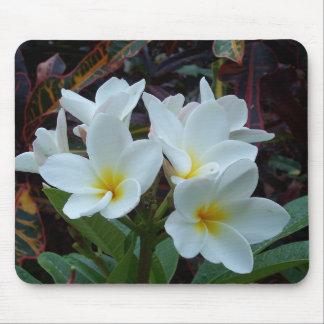 White flowers Mousepad