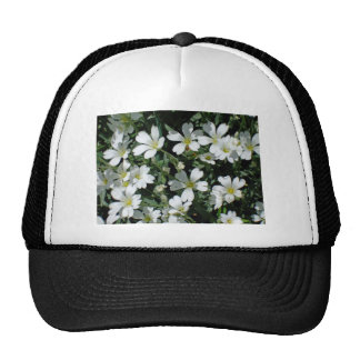 White Flowers on a Bright Day Hat
