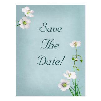 White Flowers on Blue Wedding Save The Date Postcard