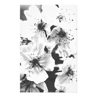 white flowers on the branches in spring stationery