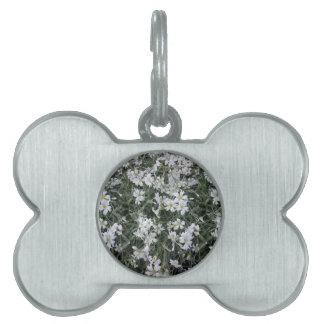 White flowers pet ID tag