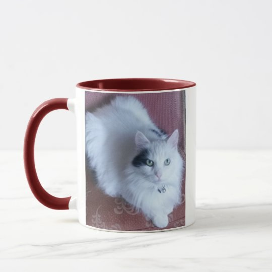 White fluffy cute cat with attitude mug