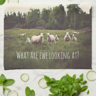 White Fluffy White Sheep & lambs in pasture photo Tea Towel