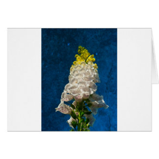 White Foxglove flowers on texture Greeting Card