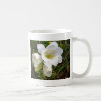 White Freesia Mug