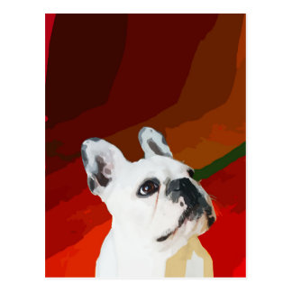 White French Bulldog Postcard