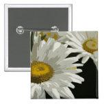 White  Garden Daisy Pinback Button
