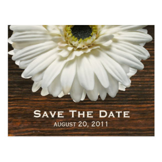 White Gerbera & Barnwood Save The Date Postcard