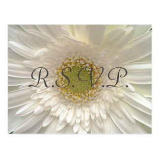 White Gerbera Daisy Wedding RSVP Postcard