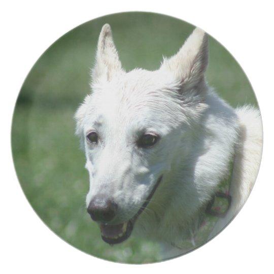 White German shepherd Plate