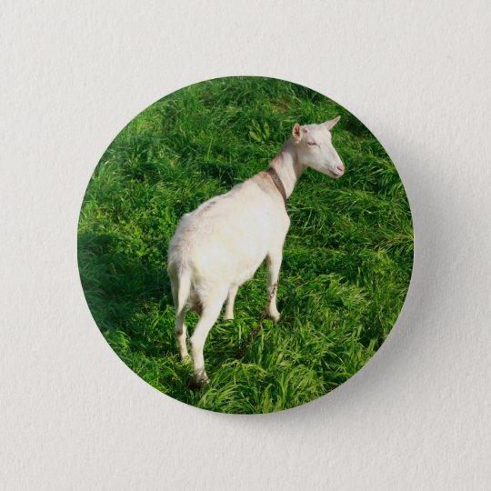 White goat 6 cm round badge