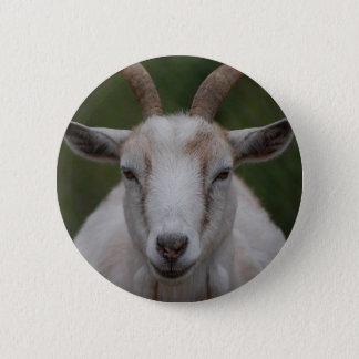 White Goat Button