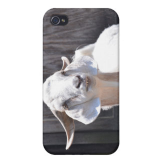 White goat iPhone 4/4S covers