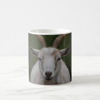 White Goat Mug