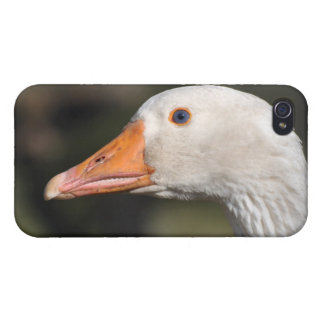 White goose case for the iPhone 4
