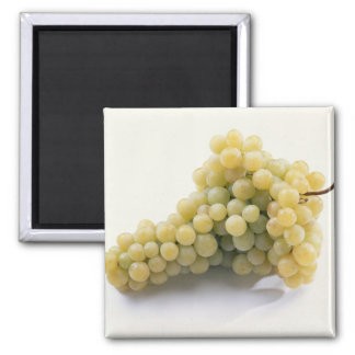 White grape For use in USA only.) Magnet