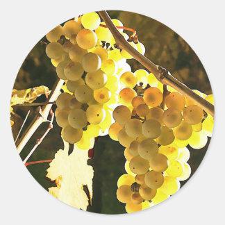 White Grapes Autumn Harvest Watercolor Round Sticker