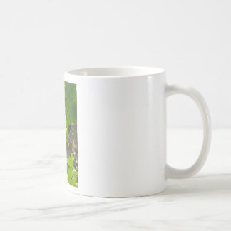 White grapes in a vineyard coffee mug