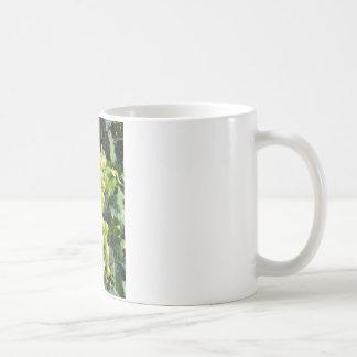 White Grapes on the Vine Basic White Mug
