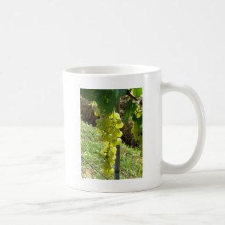 White Grapes on the Vine Coffee Mug