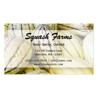 White Green Delicata Squash Pack Of Standard Business Cards