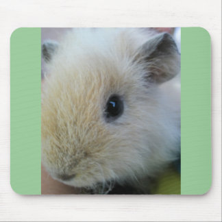 White Guinea Pig With Pretty Green Edges Mouse Mat