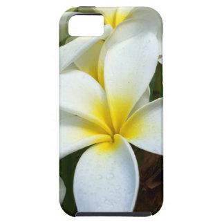 White Hawaii Plumeria Flower iPhone 5 Case