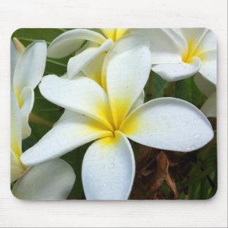 White Hawaii Plumeria Flower Mouse Mat