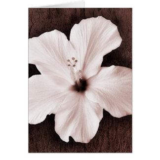 White Hawaiian Hibiscus Sepia Tropical Flower Card